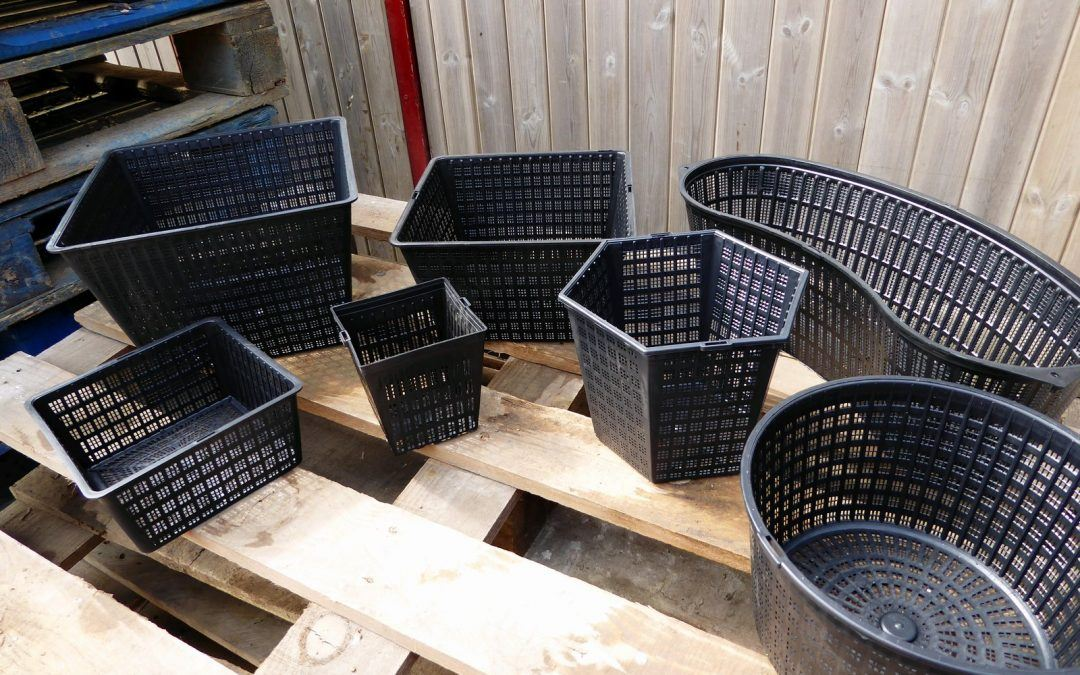 A tisket a tasket you need a planting basket